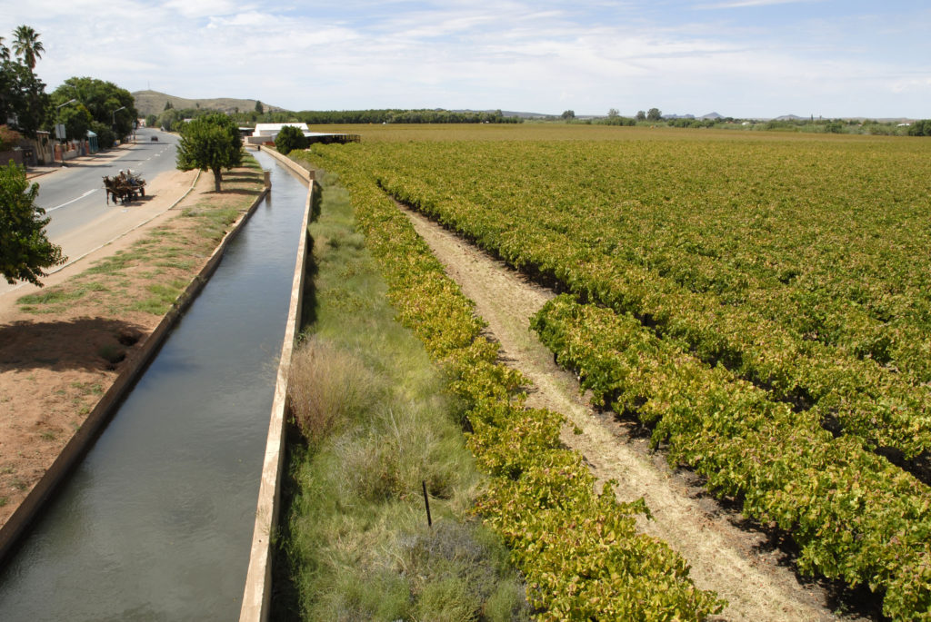 South Africa, Northern Cape: The water canal and vineyards in Keimoes.