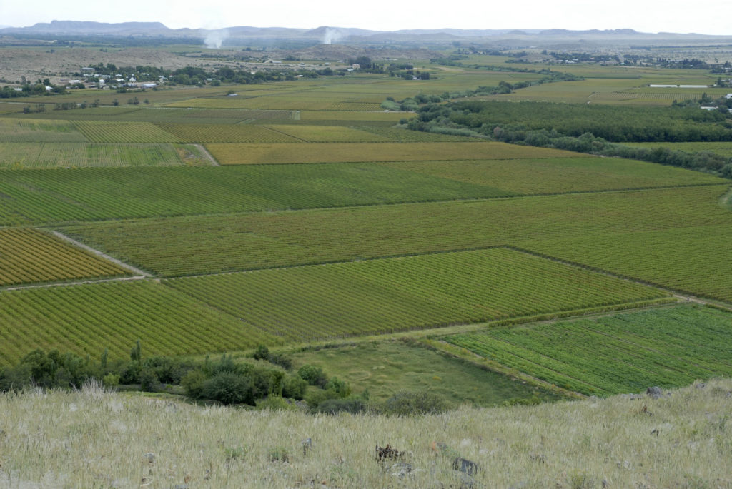 Northern Cape Province: An elevated view of the vineyards that surround Keimoes