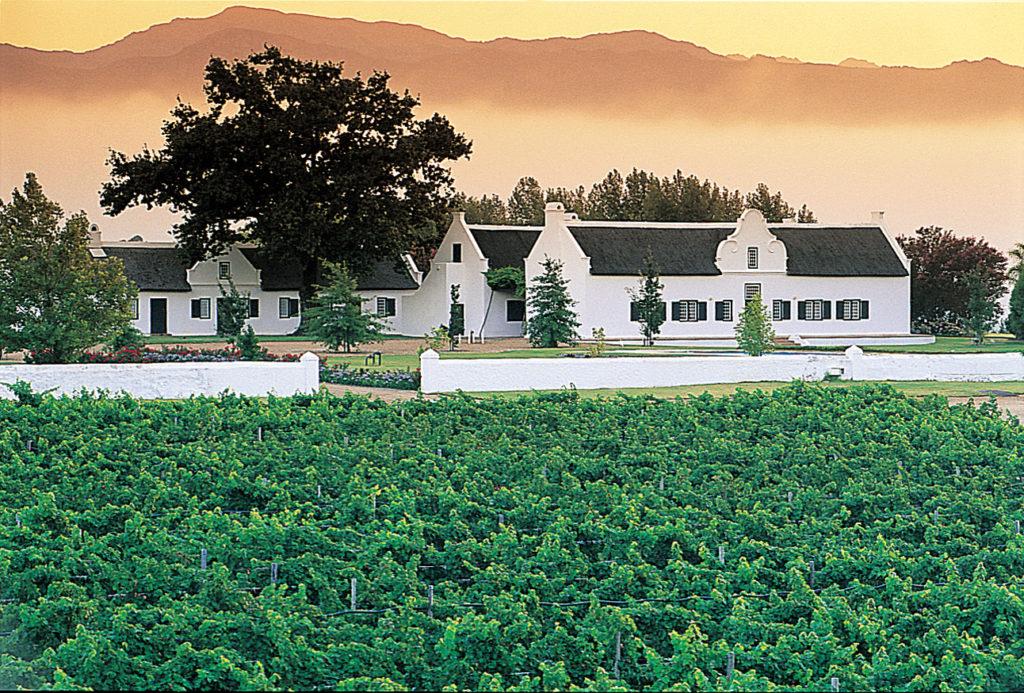 Western Cape province: A wine estate near Franschhoek