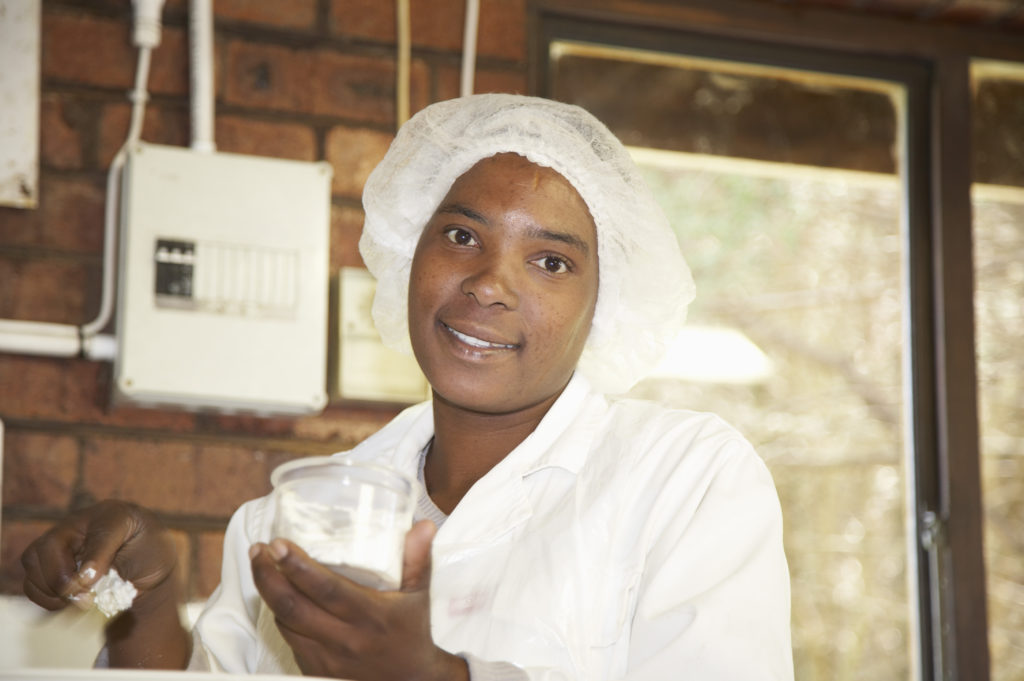 Eunice Madlala at work in the dairy of Swissland Cheese Farm