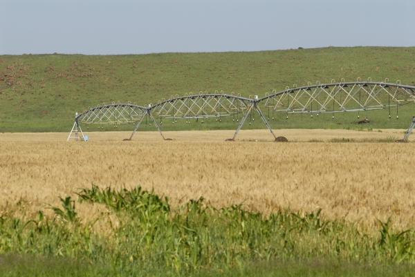 KwaZulu-Natal province: Centre-pivot irrigation system on a farm