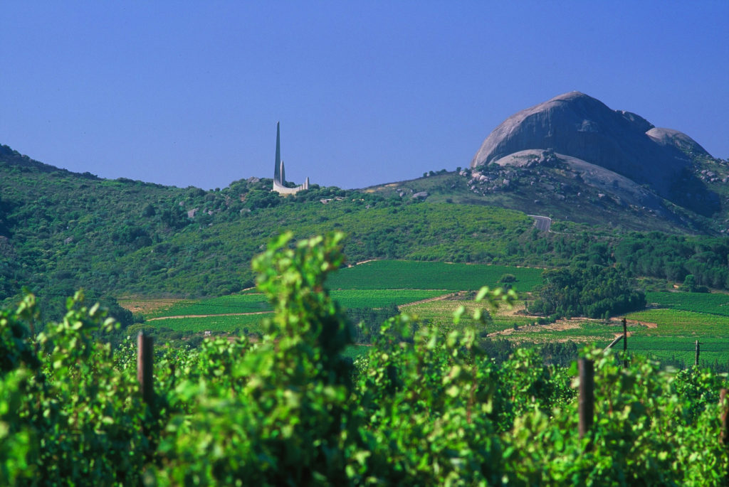 Western Cape province: Vineyards with the Afrikaans Taalmonument