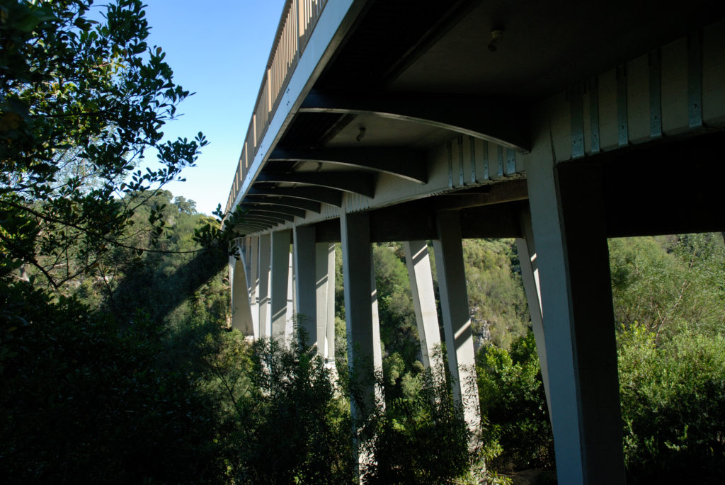 Eastern Cape: The Storms River Bridge in the Tsitsikamma National Park