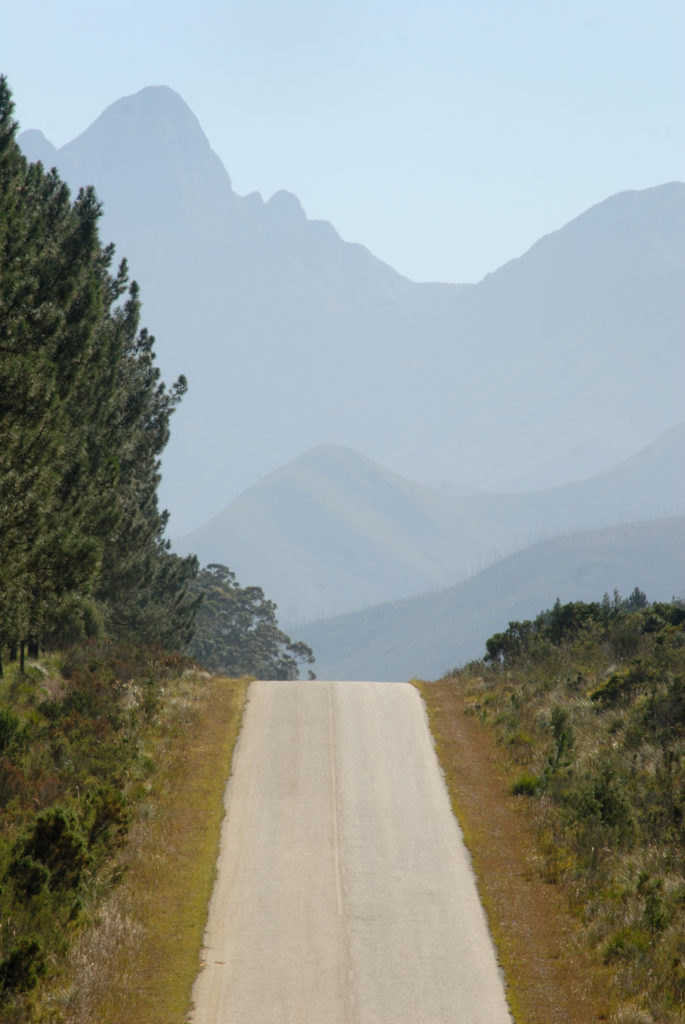 Eastern Cape province: The road out of the Tsitsikamma National Park