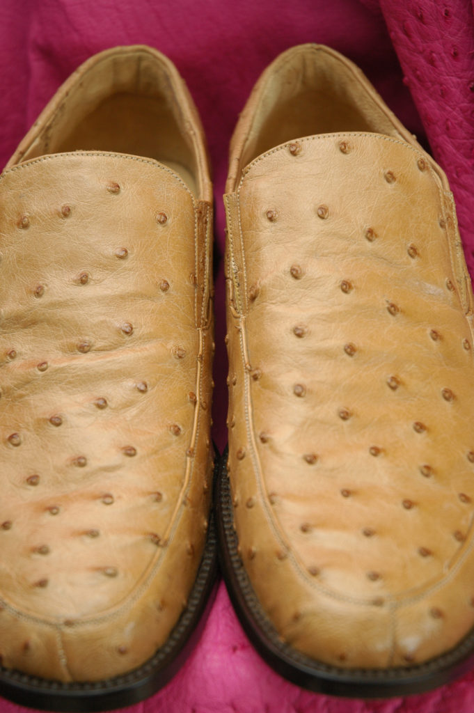 South Africa, Western Cape, Oudtshoorn. Ostrich leather shoes