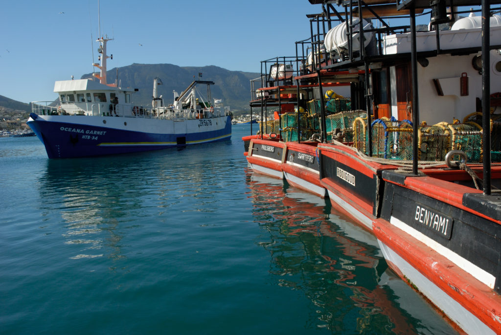 South Africa, Cape Town. Fishing boats in Hout Bay harbour