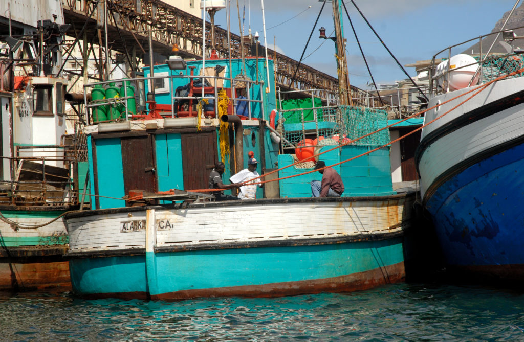 Cape Town, Western Cape province: Fishing boats in the harbour
