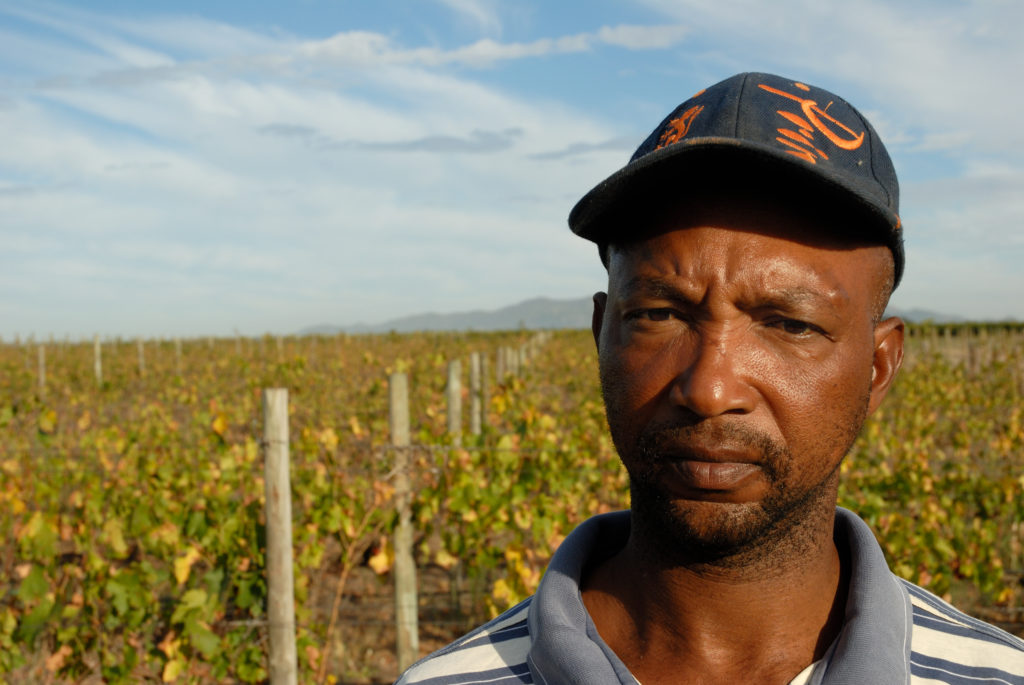 Dantjie Jagman, one of the collective of farm labourers who own New Beginnings Wine Farm, near Paarl
