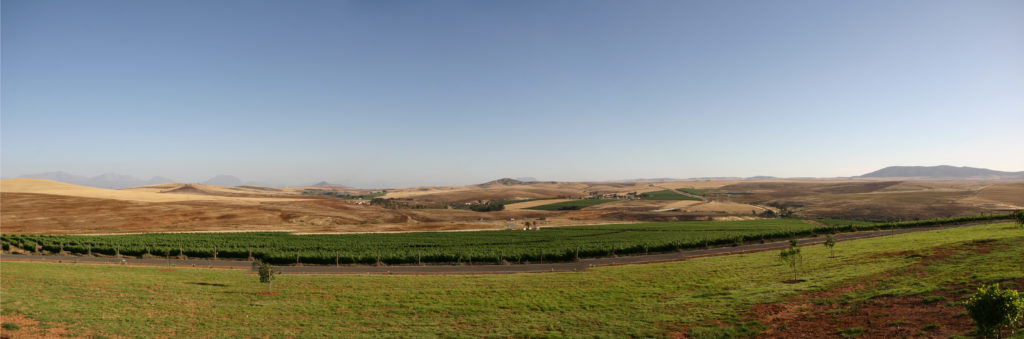 Western Cape province: The Swartland region