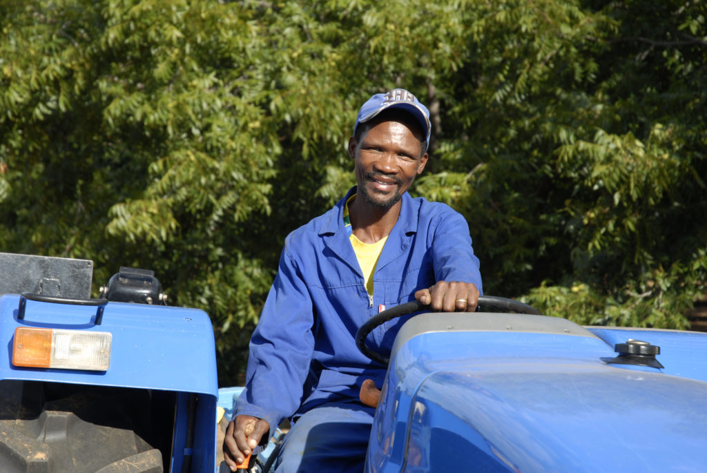 Northern Cape province: Willem Nkosi, a worker on a pecan-nut farm
