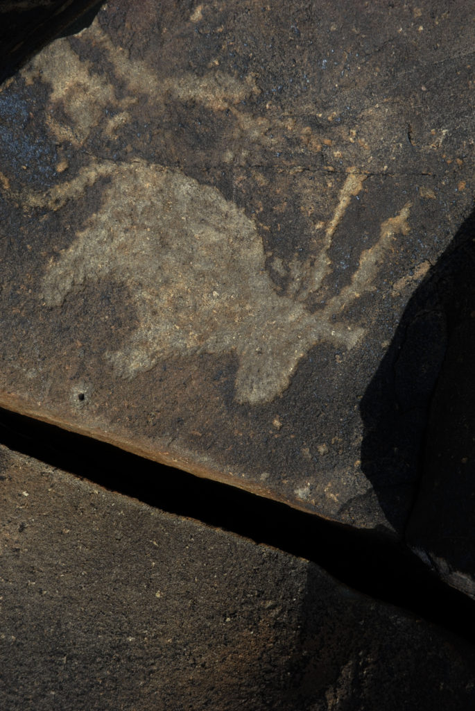 Northern Cape province: Rock engravings made by the San Bushmen