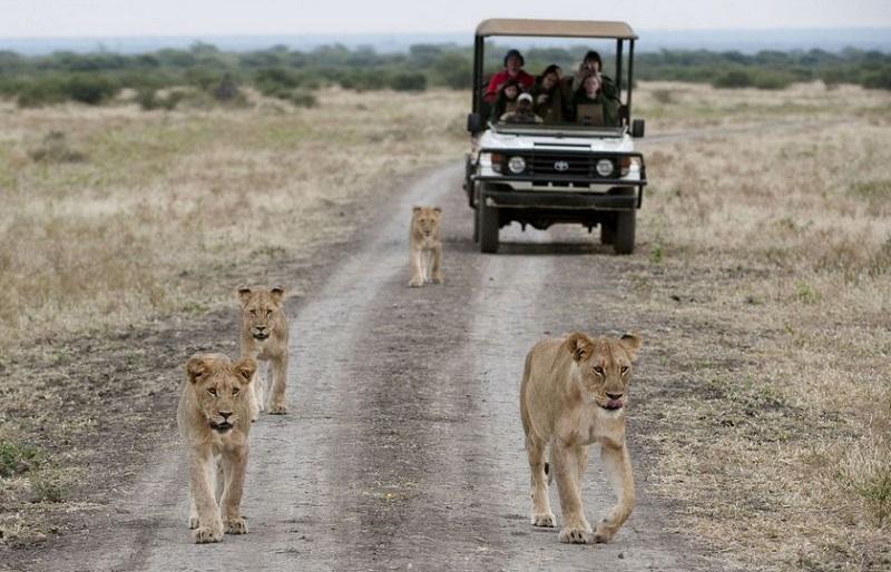 tourism public private partnerships