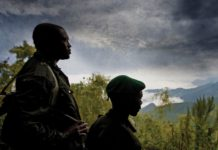 Rodrigue Katembo, Virunga National Park, Goldman Environmental Prize,