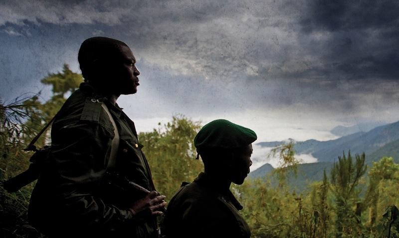 Rodrigue Katembo, Virunga National Park, Goldman Environmental Prize,