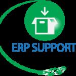 erp-support-01