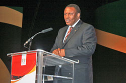 Dr Irvin Khoza, chairman of the 2010 FIFA World Cup Organising Committee