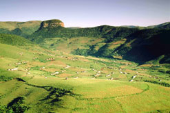 The picturesque Eastern Cape is the <br>site of a successful new scheme to <br>harvest water from fog