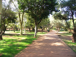 The national Zoological Gardens in Pretoria is a world-acclaimed  conservation and research centre