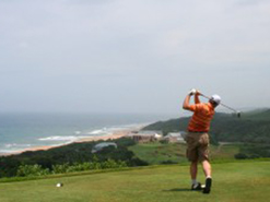 Prince's Grant was designed by top South African course designer Peter Matkovich.