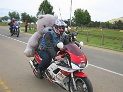 A biker with a large teddy bear to be donated to charity.