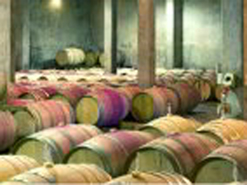 Rhebokskloof's cellar  has produced a number of award-winning wines.