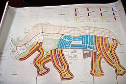 Blueprints of the proposed Rhino City.