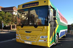 Brand South Africa Bus