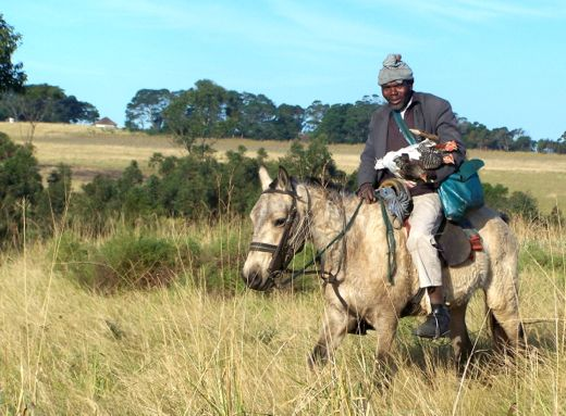 As a place of immense natural and spiritual beauty, the Transkei is a showcase of the land that made Mandela.