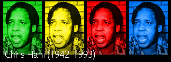 Chris Hani article
