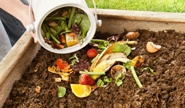 reduce-waste-compost-pic
