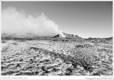 Silvermine after the fire. Image by Andrea Nixon
