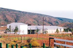 Zoar is ideally situated for organic seed production, given the Klein Karoo's dry climate